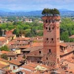 Tuscany_Lucca_Tower_w_Tree_Particular