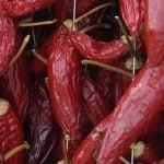 Calabria_Food_Sun_Dried_red_hot_Pepper
