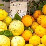 Campania_Amalfi_Coast_Lemon_Food_Citrus_480x480_GL01