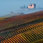 Piedmont_Grinzane_Cavour_Castle_View_Wineyard_Fall_colors