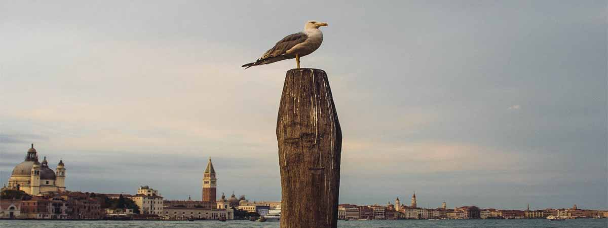 Assisi Siena Florence Venice Verona Italian Lakes Tour | Vacation Packages for 2020 – 2021