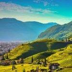 Trentino_Bolzano_Santa_Maddalena_Vineyards_view