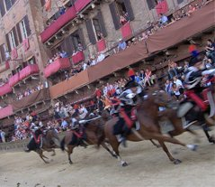 Siena Palio horse race Mounted Carabinieri police charge