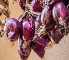 The Tropea Onions Have Many Different Uses & Benefits