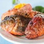 Campania Scorpion Fish Fresh SeaFood Amalfi Coast
