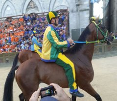 Tuscany_Siena_palio_horses_blg