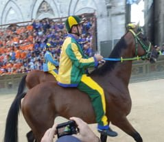 Palio di Siena: The History Of The Contrade Flags & Colors