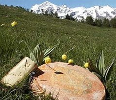Fontina Cheese: Taste a Slice of Aosta Valley