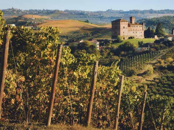 Piedmont_Langhe_Food_grinzane_cavour_Castle_Wineyard