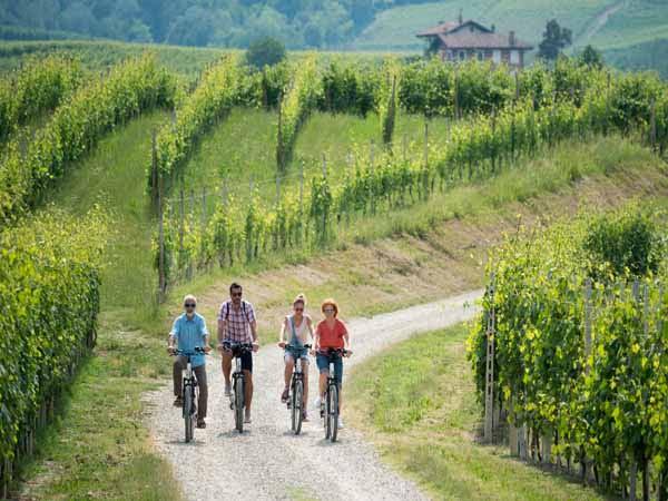 Piedmont_Langhe_people_active_Biking_green_wineyards