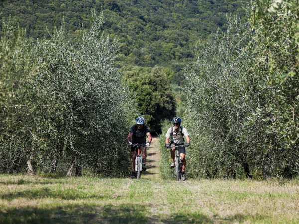 Umbria_General_Active_Sports_People_bikes