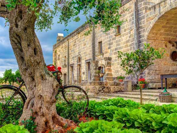 Apulia_General_Masseria_View_Culture